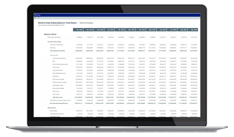 Axiom software - budgeting and forecasting dashboard